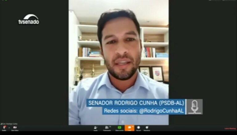 sessão virtual 3 768x440 - Em voto, Rodrigo Cunha alerta para a necessidade de medidas para populações mais vulneráveis e ajuda a brasileiros que estão fora a turismo sem conseguir voltar